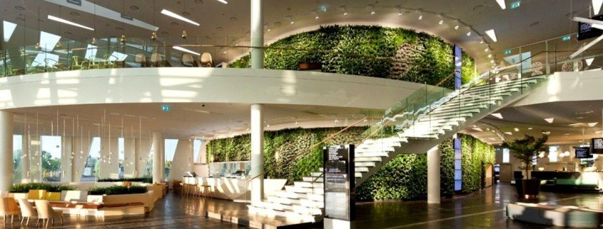 Interior landscaping contractor roma landscape design for Interior landscape design
